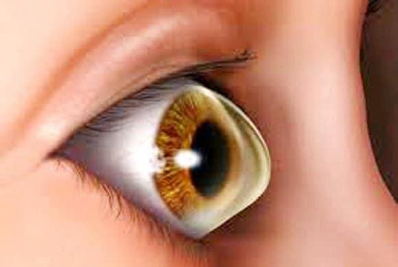 تكوين-قرنية-العين-للإنسان